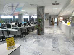 В библиотеке РГУФКСМиТ объяснят, как работать с базами иностранных диссертаций