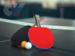 Конференция «Актуальные проблемы и перспективы развития индивидуально-игровых видов спорта» пройдет в РГУФКСМиТ
