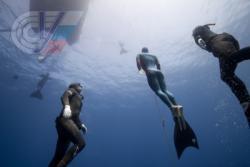 Новые рекорды Натальи и Алексея Молчановых на Индивидуальном глубинном Чемпионате мира 2013